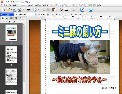 yukichi_manual.jpg